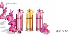 Maison Parfum