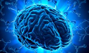 Мы то, чем мы думаем: как поддержать мозг и улучшить его функции