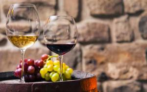 Атлантические вина Страны Басков